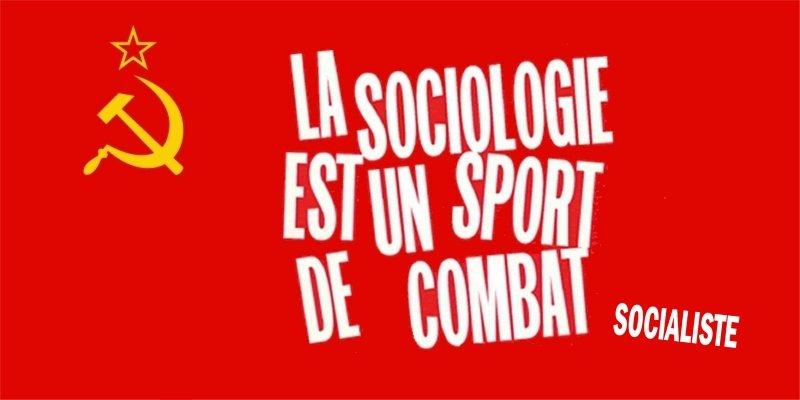 sociologie_sport-combat_socialisme031 artisan